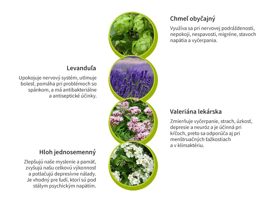 Bylinky na odbúranie zníženie stresu