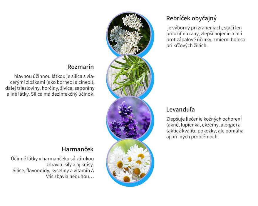 Účinné bylinky na ekzém - harmanček, rozmarín, levanduľa, rebríček, aloe vera, tymián v Dermasoft masti | HillVital