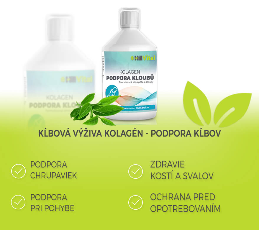 kolagen-na-klby-svaly-chrupavky-hillvital-prirodne-produkty
